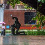 Previsão para o Carnaval no Ceará é de nebulosidade variável com chuvas em diferentes regiões