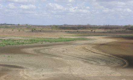 Apesar das chuvas dentro da média, Ceará ainda tem 63,2% do território com algum nível de seca
