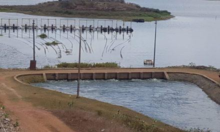 Comitê das Bacias Hidrográficas da Região Metropolitana de Fortaleza celebra 15 anos