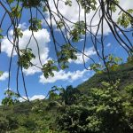Ceará segue com previsão de predomínio de céu entre parcialmente nublado e claro em todas as regiões