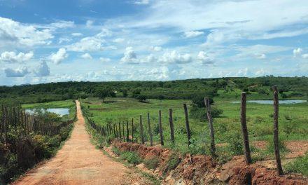 Com noroeste e sul mais favoráveis, Ceará segue com tendência de chuvas em todas as regiões até esta sexta-feira