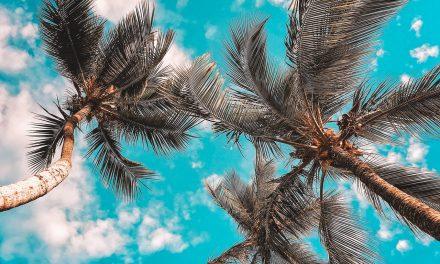 Ceará segue com tendência de céu claro, mas litorais de Fortaleza e Pecém poderão ter chuva fraca e passageira até sexta